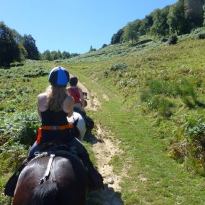 Riding horses in the French Pyrenees