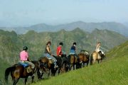 Horse trekking views