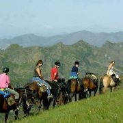 Horse trekking views