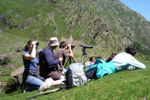 Family observing Pyrenees wildlife