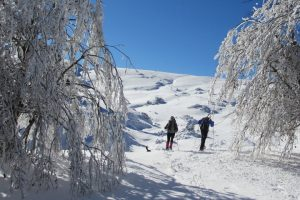 Snowshoeing on holiday in the French Pyrenees