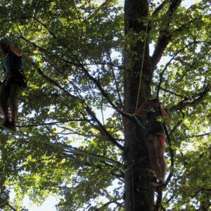 Pendulum swing on a multi activity holiday