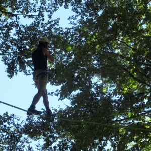 Test your balance and nerve tree climbing