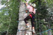 Testing nerve tree climbing