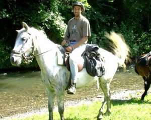 Willi horse riding expert