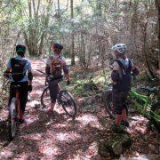 Womens's mountain biking woodland riding