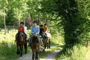 Horse riding on a summer multi activity holiday