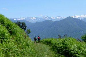 Glorious views hiking the Freedom Trail