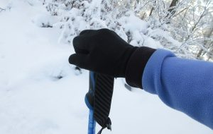 Snowshoeing advice including hand position on poles