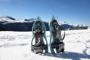 Mountain snowshoes