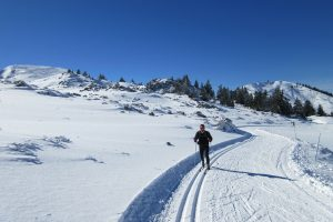 Learning cross country skiing