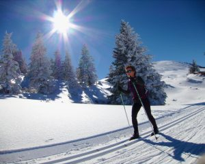Classic style cross country skiing