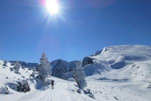 XC skiing on skinny skis