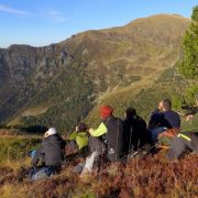 Scanning for bears on a bear tracking wildlife holiday