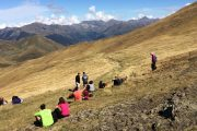 Watching for bears on a Pyrenees wildlife holiday