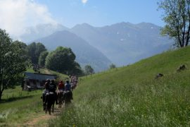 Horse trek on the Ariege Pyrenees Transhumance