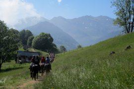 Horse trek on the Ariege Pyrenees Transhumance