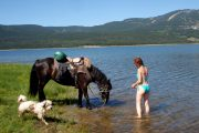A refreshing dip on horse riding holiday