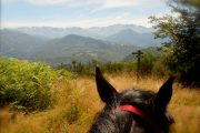 Views to the high mountains on day 1 of horse riding holiday