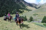 Unspoilt and authentic landscape horse riding in France