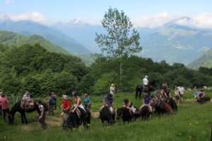 Taking a break on Merens transhumance Ariege Pyrenees