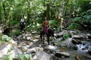 Shady river crossing on Pyrenees horse riding holiday