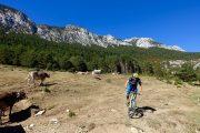 Beautiful mountain biking in Benasque valley