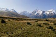 mountain vistas walking with huskies
