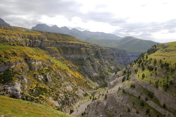 limestone gorges ordesa