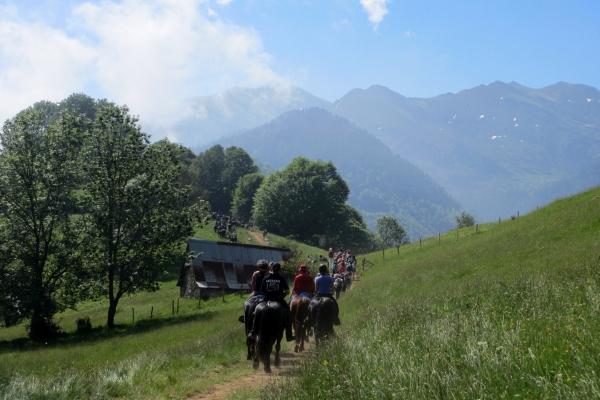 Pyrenees horse trekking transhumance experience