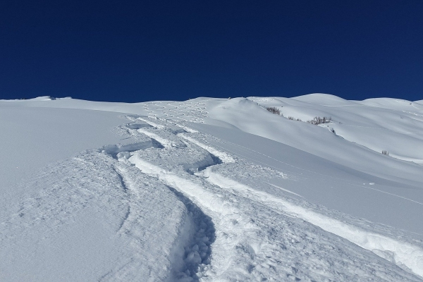 ski tracks back country